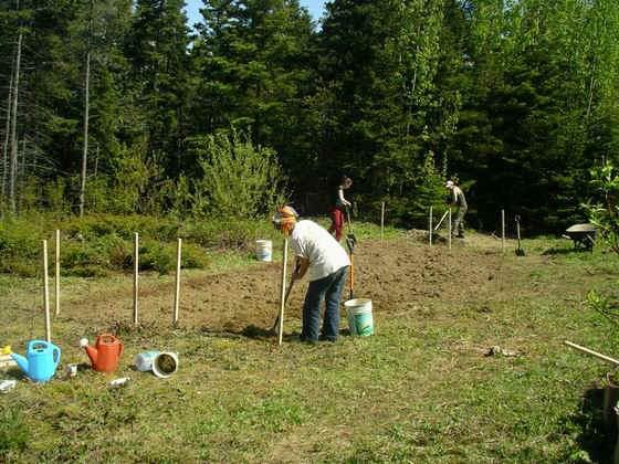 jardin autofertile isle aux coudres On implantation jardin
